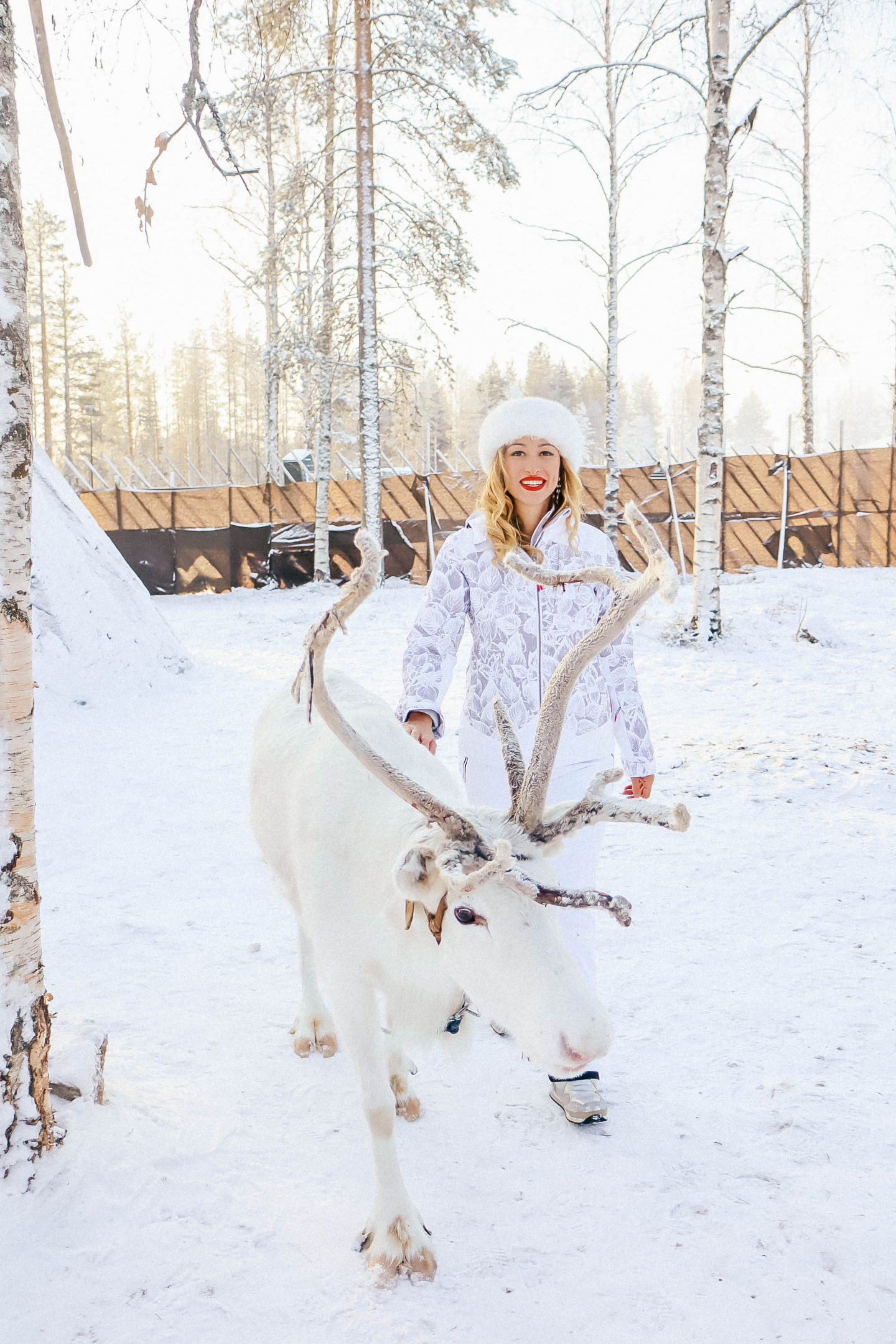 Trip to the Finnish Lapland with Visit Rovaniemi